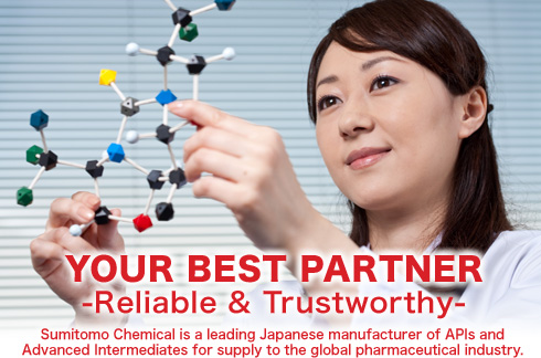 YOUR BEST PARTNER -Reliable & Trustworthy-