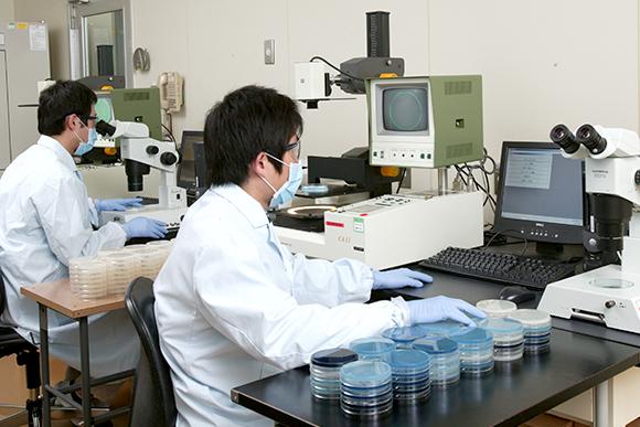 生物環境科学研究所 | 研究所紹介 | 住友化学株式会社